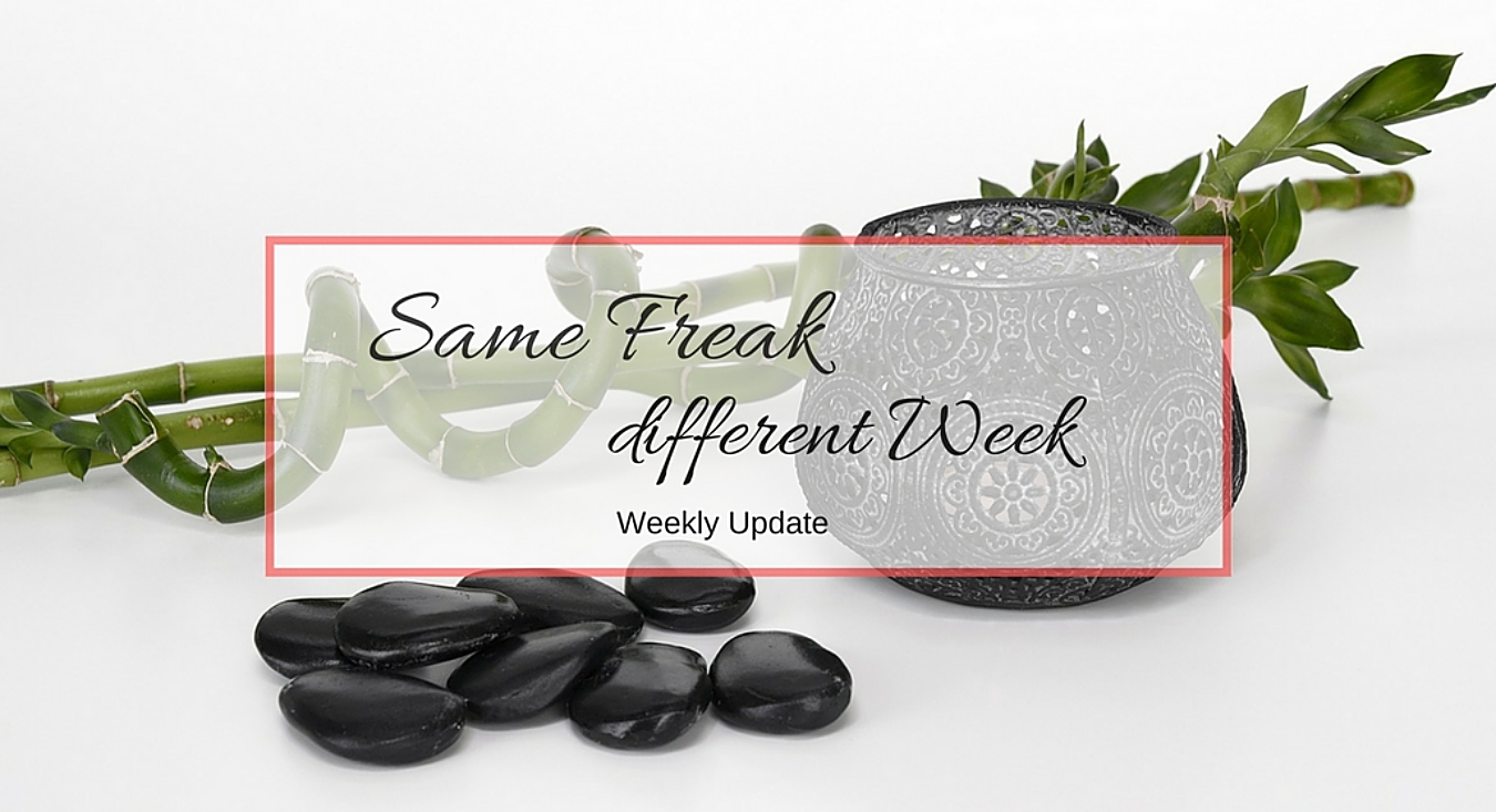 Same Freak Different Week - KW 15 & 16