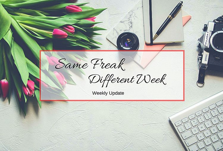 Same Freak Different Week – KW 18 & 19