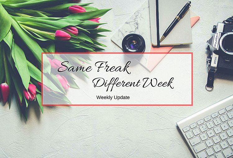 Same Freak Different Week – KW 18 & 19