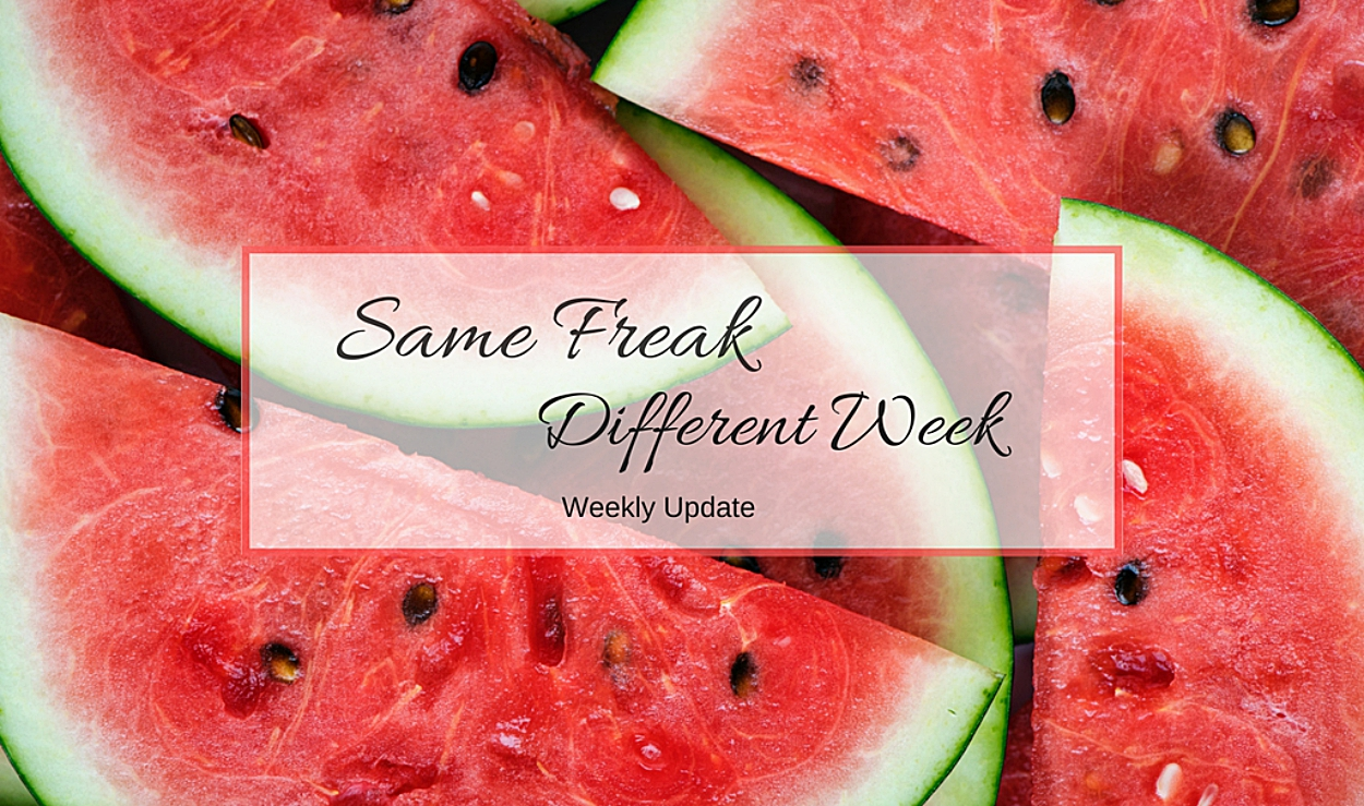 Same Freak Different Week - KW 20 bis 22