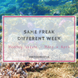 Same Freak Different Week – März & April